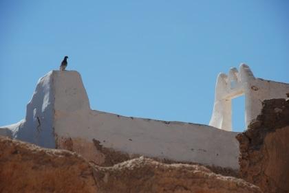 tunezja-libia-2009-104