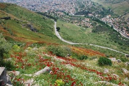 turcja-syria-jordania-2008-131