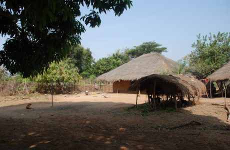 Senegal, Gambia, Gwinea-Bissau 2013 – dzień 30 i 31