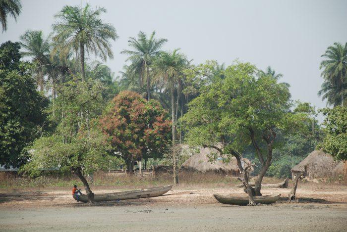 Senegal, Gambia, Gwinea-Bissau 2013 – dzień 17