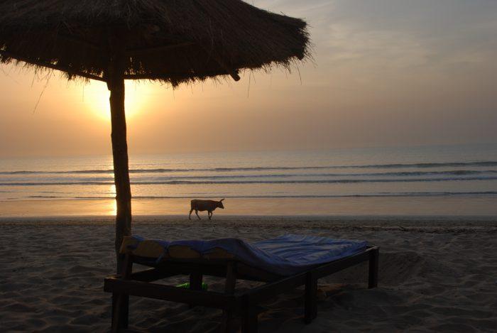 Senegal, Gambia, Gwinea-Bissau 2013 – dzień 14