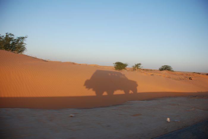 Senegal, Gambia, Gwinea-Bissau 2013 – dzień 8