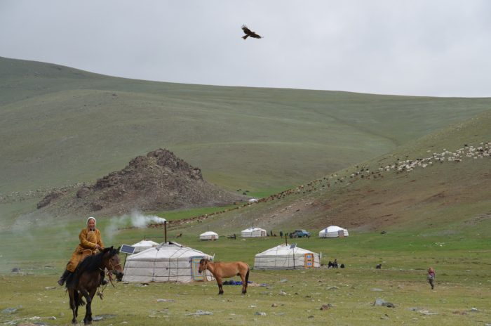 Mongolia 2013 – dzień 12