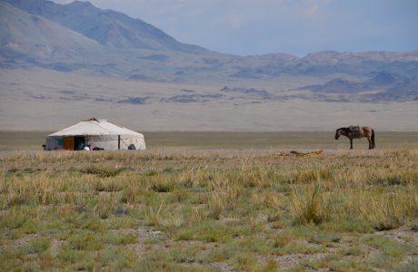 Mongolia 2013 – dzień 36