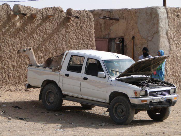 Maroko, Sahara Zachodnia, Mauretania 2011 – dzień 13