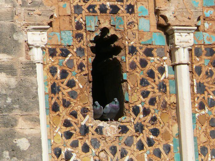 Maroko, Sahara Zachodnia, Mauretania 2011 – dzień 26