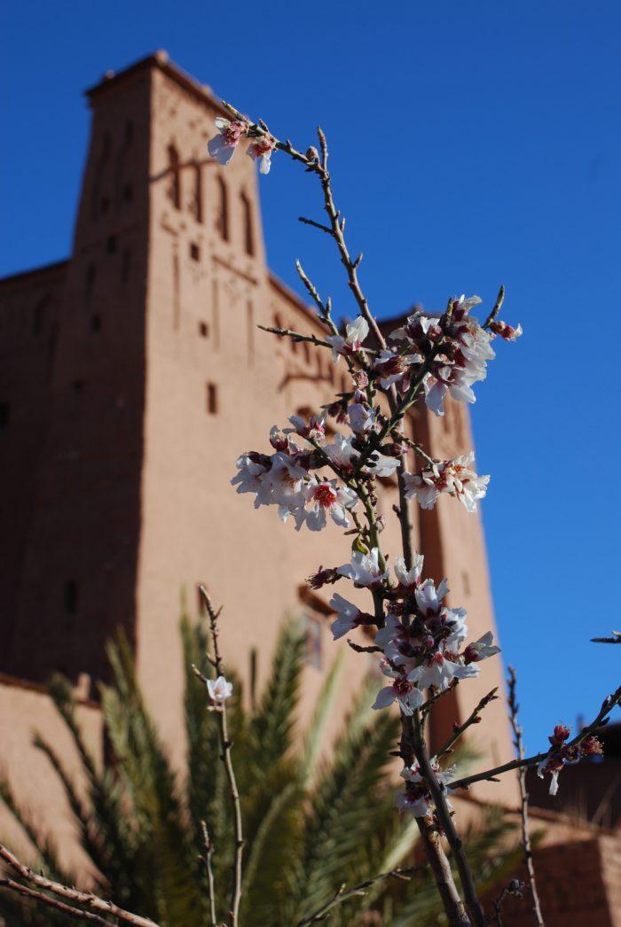 Hiszpania, Maroko 2011 – dzień 11