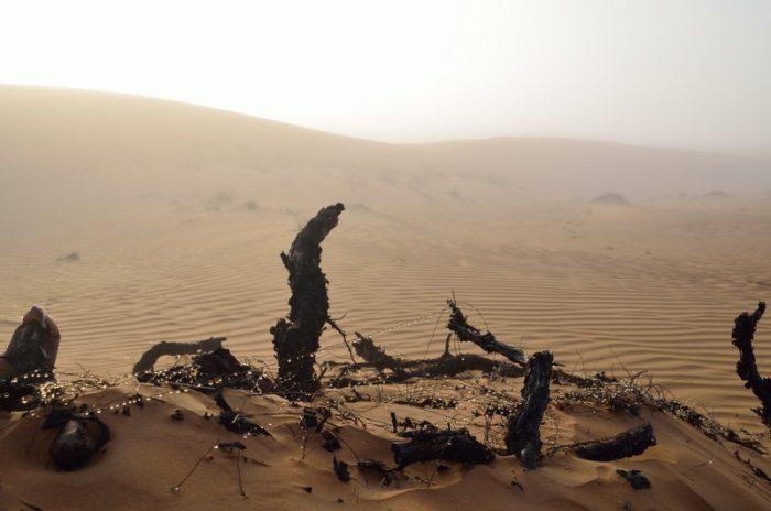 Iran, ZEA, Oman 2014 – dzień 22