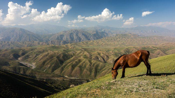 Kazachstan, Kirgistan, Tadżykistan, Chiny 2015 – dzień 25 i 26