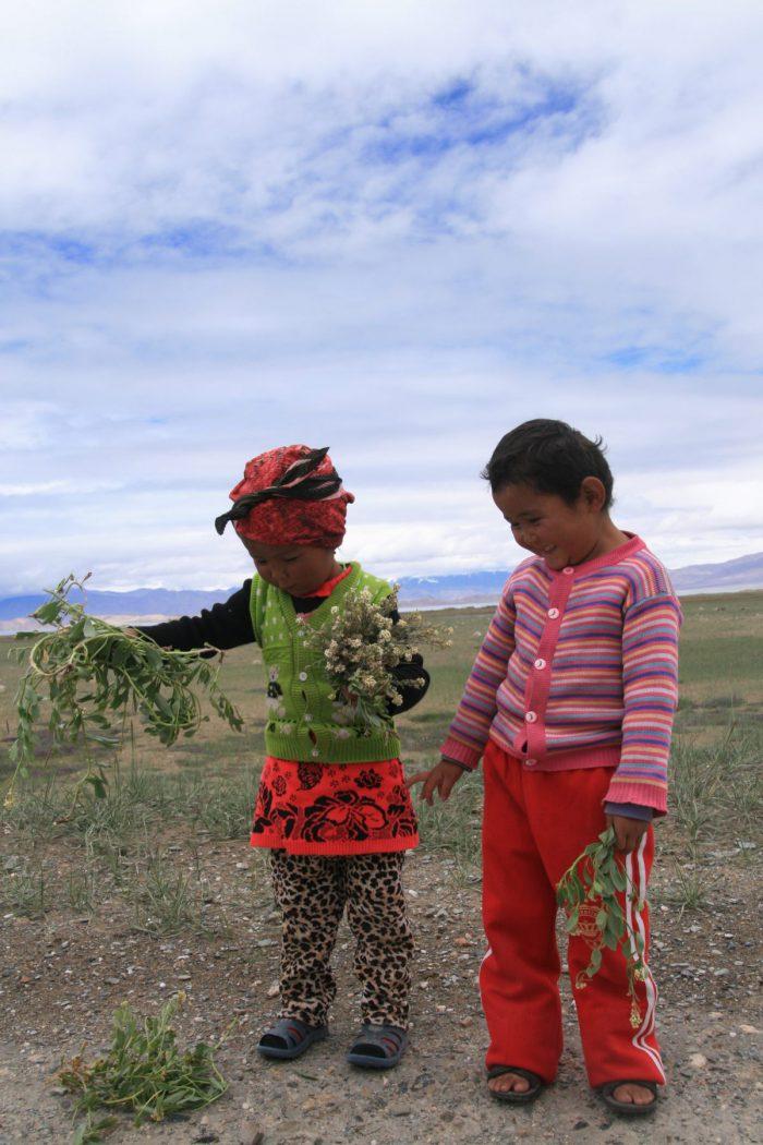 Kazachstan, Kirgistan, Tadżykistan, Chiny 2015 – dzień 24