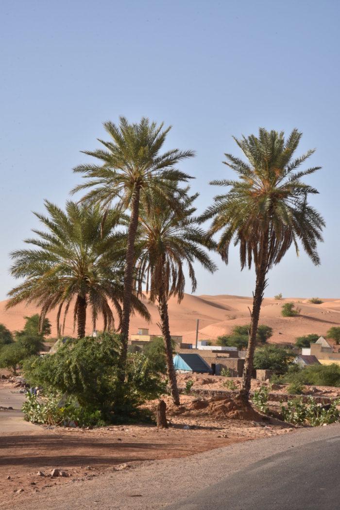 Mauretania, Mali, Burkina Faso, Benin, Togo 2018 – dzień 28